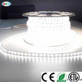 indicatore luminoso di striscia variopinto di 110V/120V/220V/240V/277V 5050 RGB LED con il regolatore