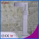 Taraud de mélangeur simple de l'eau de robinet de lavabo de traitement de corps de chrome de Fyeer de type rotatif créateur en laiton élevé de clé