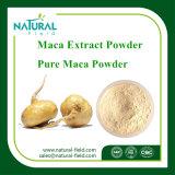 Suplemento natural ao alimento do 4:1 do pó de Maca do extrato da planta