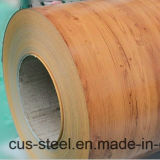Bobines d'acier de couleur de la couverture PPGI/PPGL/Wooden de Matt/configuration en bois PPGI
