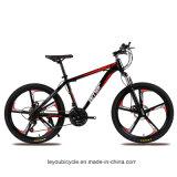 Fornecedor de bicicleta de montanha MTB barato da China (ly-a-12)