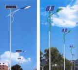 Al aire libre todos en una luz solar de Stree con el mecanismo de detección auto