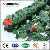 Copertura di plastica verde decorativa della parete di modo per l'uso esterno
