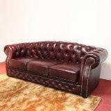 União Pequena sala de estar sofá de couro