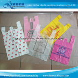 Máquina de impressão de Flexo de 2 cores para o saco de plástico