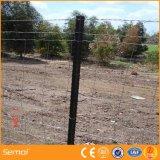 Frontière de sécurité galvanisée plongée chaude de cerfs communs de la qualité 8FT