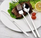 Jeux de vaisselle plate de cuillère de fourche de couteau d'acier inoxydable
