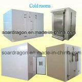 Caminhada de processamento de alimentos de grande porte na sala de armazenamento a frio