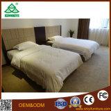 Les meubles de pièce de double bâti conçoivent le jeu de chambre à coucher