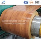 Prepainted/выбил/гальванизированная зерном стальная катушка катушки PPGI