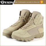 Ботинки пустыни тактического боя Mens напольных спортов воинские продают оптом