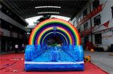 プールChsl660が付いている虹の膨脹可能な二重スリップそしてスライド