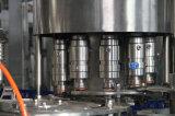 Monoblock 4 in-1 Machine van de Verpakking van het Vruchtesap van de Fles van het Huisdier Automatische Bottelende