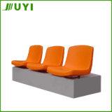 Disposizioni dei posti a sedere esterne del pubblico di ginnastica della sede Blm-1311