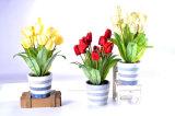 De kunstmatige Kleurrijke Tulp van de Bos in de Pot van het Cement voor Al Openbare Decoratie