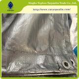 Hoja de plástico de HDPE Fabricante toldo de lona de polipropileno