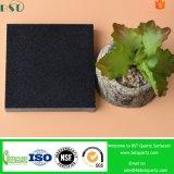 Чисто черный полуфабрикат камень кварца для Countertop