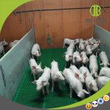 Tipi di stalle di svezzamento della penna della scuola materna del maiale delle penne di maiale