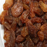 De rode Gouden Rozijnen van de Rozijnen van Rozijnen Bruine