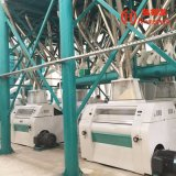 Kenia, das Universalmehl-Fräsmaschine des mais-150t laufen lässt