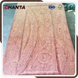 De houten Huid van de Deur van de Melamine van het Ontwerp van Deuren met Goede Kwaliteit