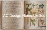 تفصيل علم نبات [بو] [لثر/مدف] خشبيّة كتاب شكل جدار فنية
