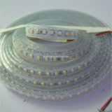 3528 120LED / M Bandeau blanc 12V24V LED