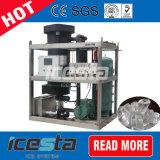capacidad de producción de hielo 100% garantizada hasta 30 toneladas de hielo de tubo de la máquina