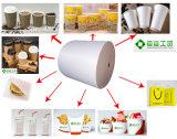 Papier enduit de PE pour des cuvettes de café, bol de glace, boîte à sandwich, pommes frites épuisette, cadre de restauration de ligne aérienne