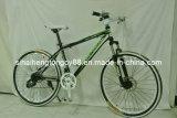 26inch 21速度の鉄骨フレーム山の自転車(MTB-092)