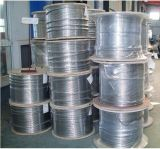 AISI304ステンレス鋼の毛管管