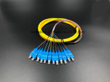 Cavi di zona di Boundle Sc/Upc di memorie del cavo ottico 12 della fibra di Gpon Telecommucation