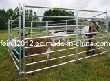 Marca Feirui obstáculos ovejas galvanizado