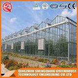Serre van het Glas van de multi-Spanwijdte van de landbouw de Tuin Aangemaakte