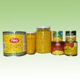 Les conserves de maïs sucré-2