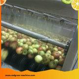 Apfelsaft-aufbereitende Maschine