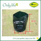 Onlylife wächst am meisten benutztes PET Gemüse Beutel mit einer Tasche