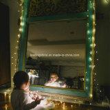 Van het LEIDENE van het Koord van de Voetzoeker van aa de Batterij In werking gestelde on/off Schakelaar Lichte Decor van Kerstmis