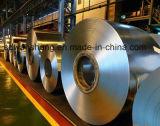 Cr bobinas de acero laminado en frío de la fábrica de China SPCC DC01 DC04 ST12