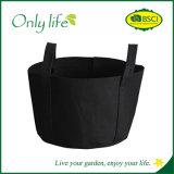 Onlylife PET Qualitäts-wächst bequemes Garten-Pflanzer-Gemüse Beutel
