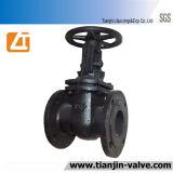무쇠 게이트 밸브 또는 줄기 게이트 밸브