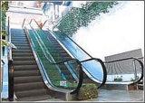 Bewegendes Stairs/Escalator für Einkaufszentrum (W8)