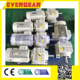As séries de R Sew a caixa de engrenagens Inline helicoidal modelo