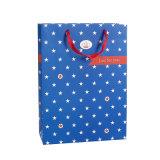 Дешевые цены печати CMYK OEM Wholesales бумаги подарок сумки