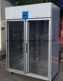 유리제 문을%s 가진 냉장고도달하 에서 1400L 스테인리스 냉장고 냉장고,