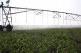 La Chine à l'irrigation de la machine, Meilleure vente Machine d'irrigation à pivot central