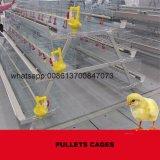 L'Ouganda Cage de poulet de la machinerie agricole de la couche