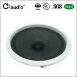 6.5 Zoll-lauter Lautsprecher mit Papierkegel für PA