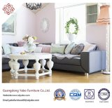 Comfortable hotel Furniture with Living Room sofa Furniture (YB-B-31)