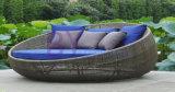 Daybed ao ar livre Ninho-Shaped do Rattan do balcão do estilo europeu
